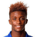 Demarai Gray - фото